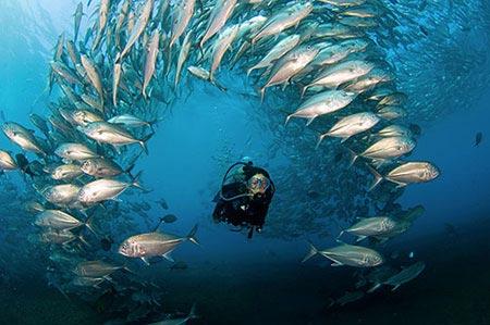 diving-in-tulamben-1.jpg