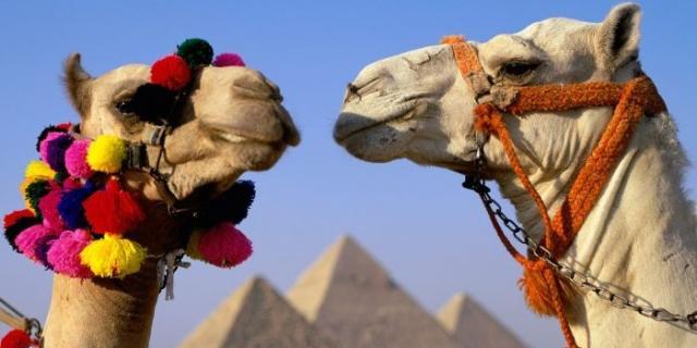 ekskursii_v_egipte_iz_hurgady.jpg