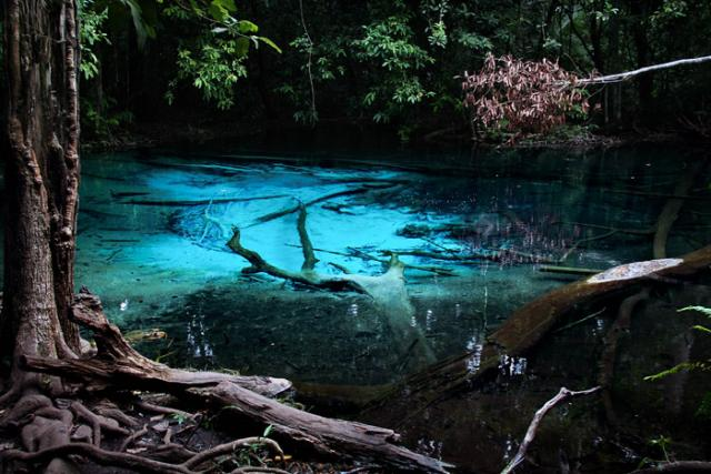 emerald-pool-krabi20.jpg