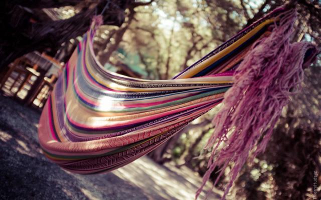 hammock_03.jpg