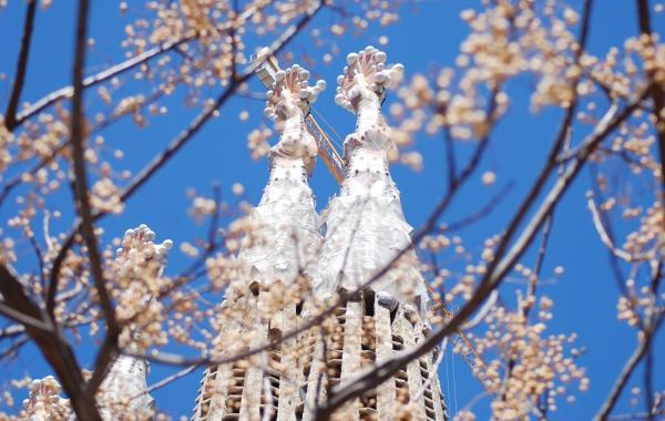 Барселона в начале весны это