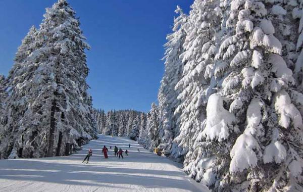 Болгария в декабре - погода и цены
