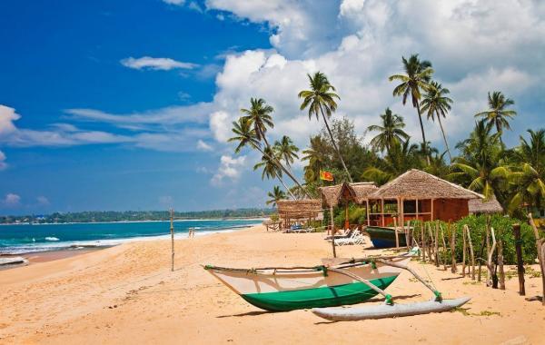 Санкт-Петербург и Шри-Ланку скоро свяжет регулярное авиасообщение