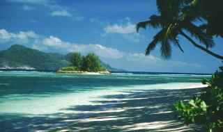 Что привезти с Сейшельских островов