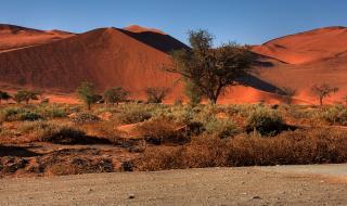Открытие нового туристического центра в Намибии