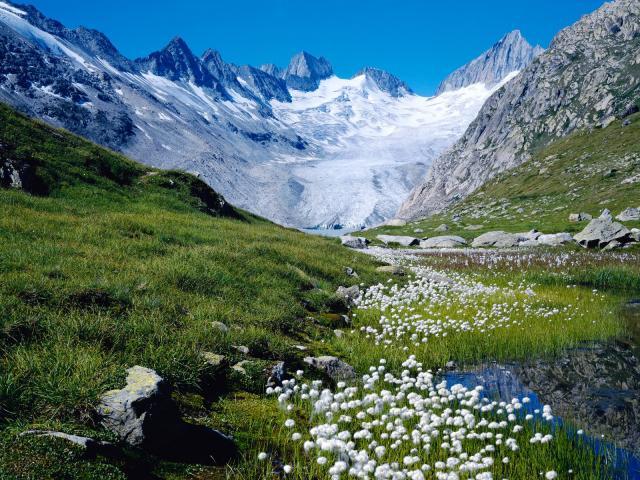 Швейцария: горы и луга