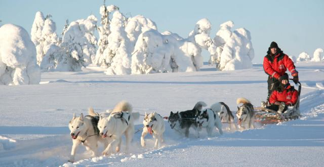 Снежная Финляндия