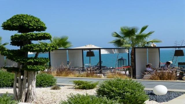 Тунисский ландшафт у отеля