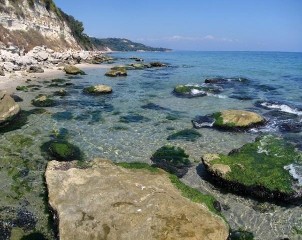 Ласковое побережье Черного моря